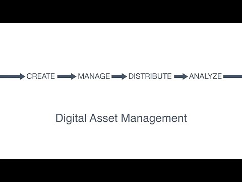 digital-asset-management