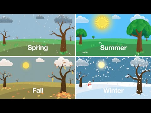 Seasons Song Learn the Seasons of the Year for Kids