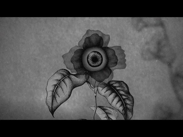 Cat Loris - Teaser Lâcher prise (nouveau clip)