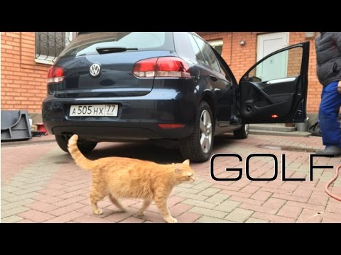 Volkswagen Golf SQ eng sub