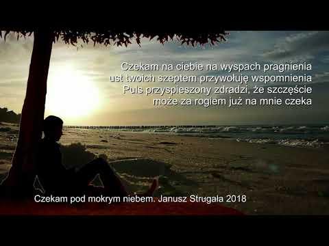 Czekam pod mokrym niebem. Janusz Strugała. Poezja śpiewana. 2018