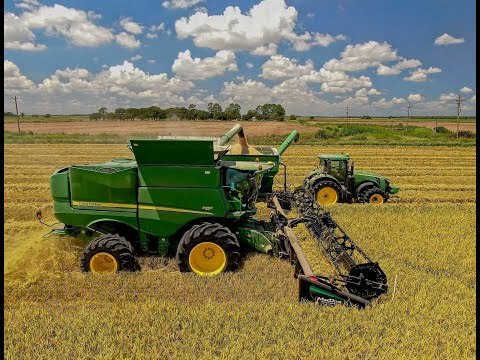 2020 Louisiana Rice Harvest 4K