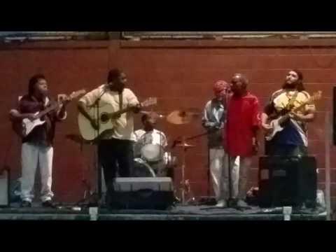 Black crubians band purple rain