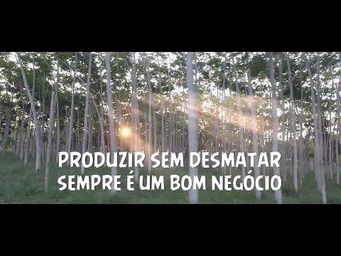 produzir-sem-desmatar---série-sustentabilidade-ambiental-da-amazônia
