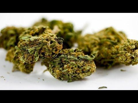 What are THC & CBD in Marijuana ?