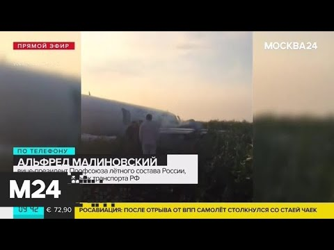 Вице-президент Профсоюза летного состава России прокомментировал инцидент с Airbus А321 - Москва 24