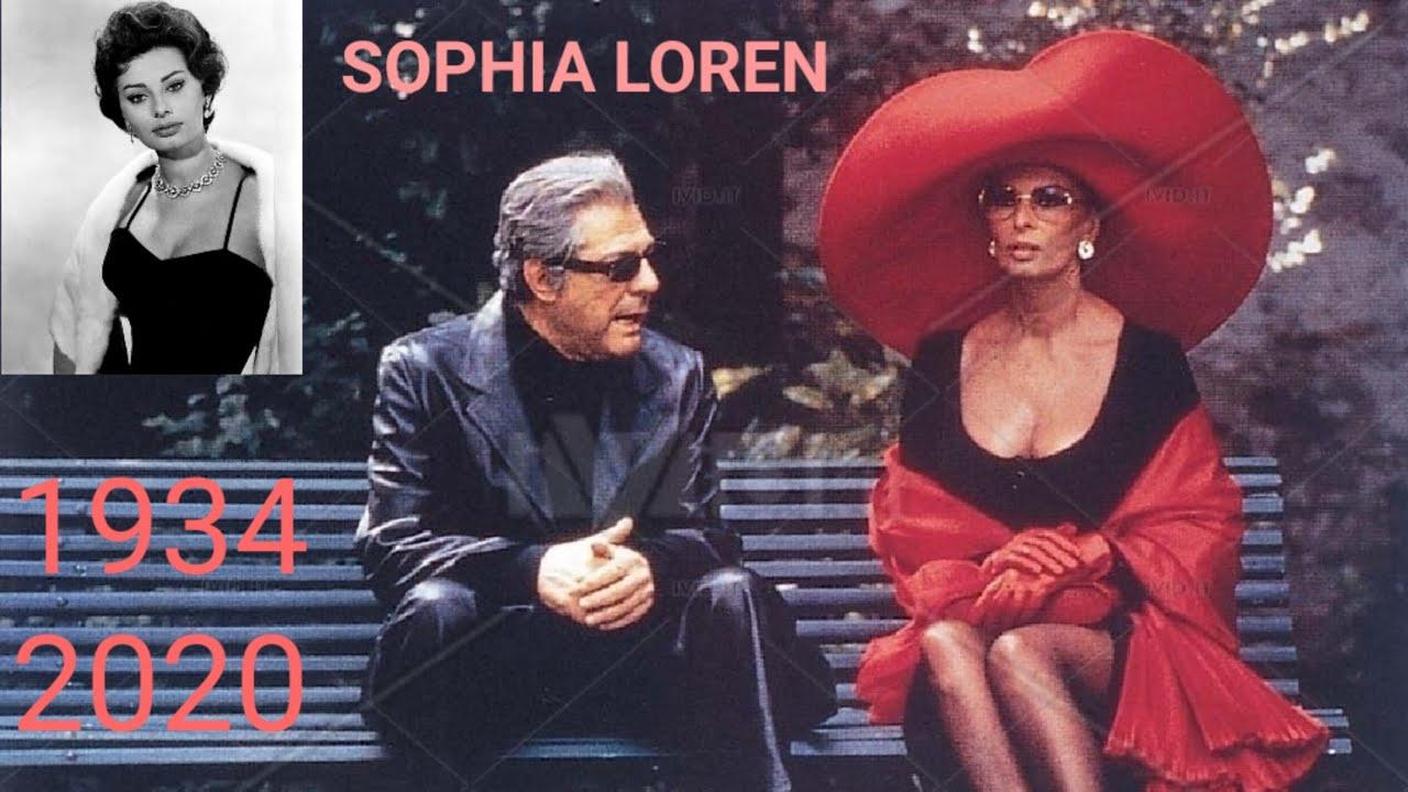 Sophia Loren Transformation Trasformazione 0 85 Years Anni 1934 2020 Youtube