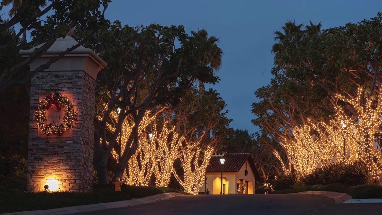Total Outdoor Lighting: Total Outdoor Lighting Holiday Promo,Lighting