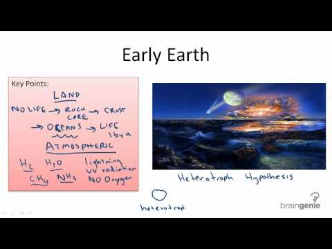 11.1.1 Early Earth and Heterotroph Hypothesis
