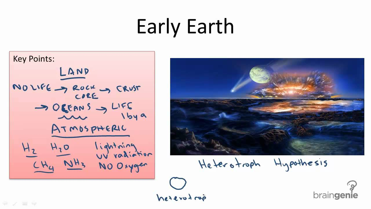 heterotroph hypothesis Lesson: origin of life- spontaneous generation, early scientific experiments, and heterotroph hypothesisobjective: students will be able to explain spontaneous.