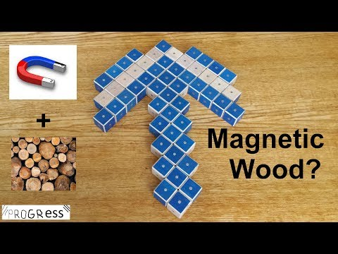 Magnetic blocks of Wood