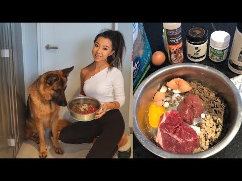 WHAT I FEED MY GERMAN SHEPHERD - RAW + SUPPLEMENTS