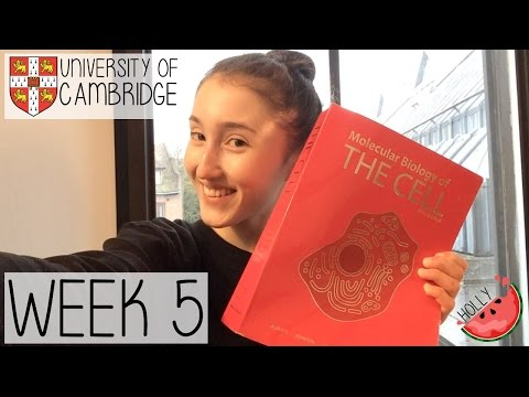 WEEK 5 AT CAMBRIDGE UNIVERSITY | PRESENTS IN THE POST, OVERSLEEPING & FIREWORKS NIGHT