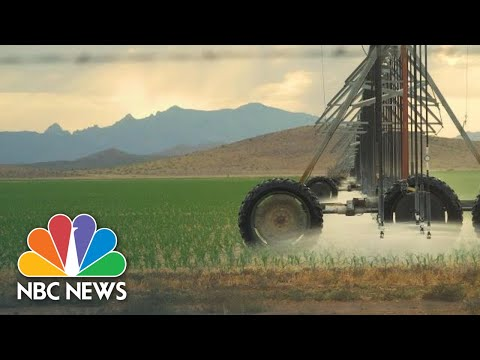 Draining Arizona: Mining For Water In The Desert Leaves Residents' Wells Dry | NBC News