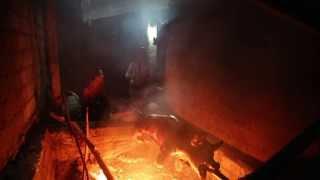 Indo Pig Roast HD