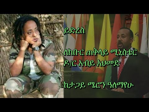 Letter to H.E Prime Minister Dr. Abiy Ahmed - From Meron Alemayehu