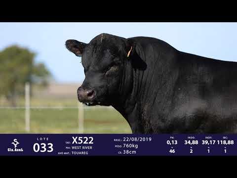 LOTE 33 - TAT X522