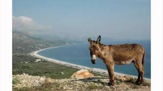 Blerina Balili - Lerm o djal te shkoj (offical video 2012)
