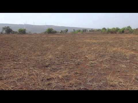 agriculture land for sale at 4 lakh per acre (www.farmhouseplots.in)