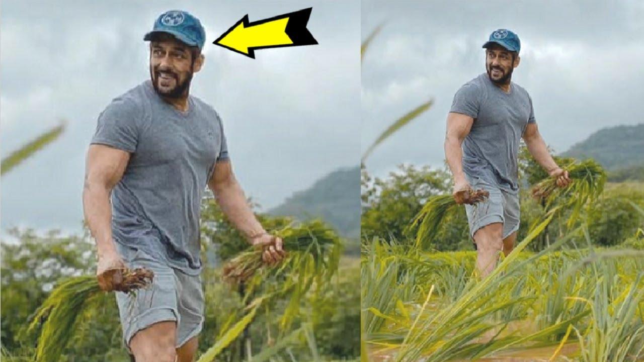 Salman Khan Doing खेती का काम In His Field At His Farm House