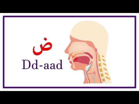 Arabic Alphabet Pronunciation