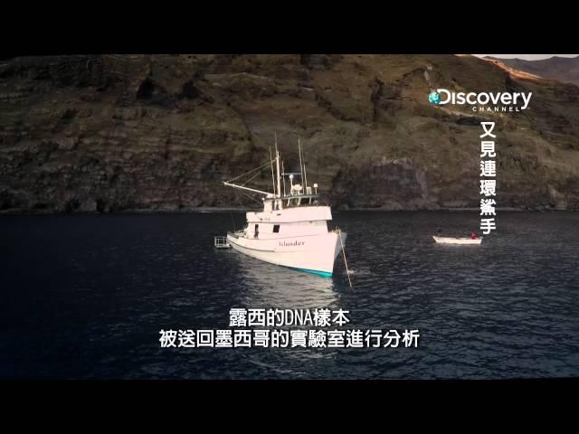 又見連環鯊手 004 鯊魚皮膚上採集DNA 樣本可以用來驗證個體的身分 HD MP4檔