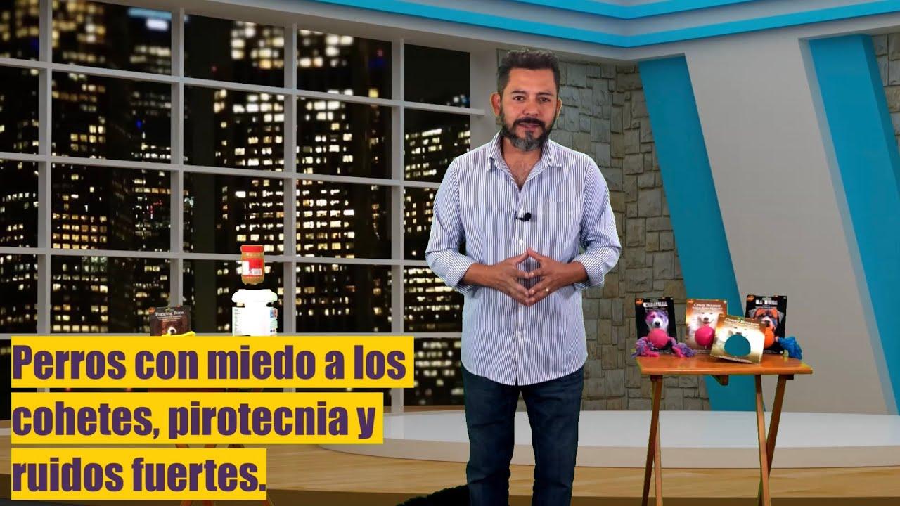 Amores Perros Escenas Hot arturo cruz, author at el croqueton - página 2 de 6