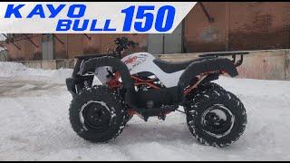 Квадроцикл KAYO BULL-150 | Квадроцикл | Kayo 2021 |Rockot-Motors