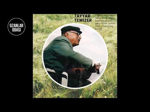 Tayyar Temizer