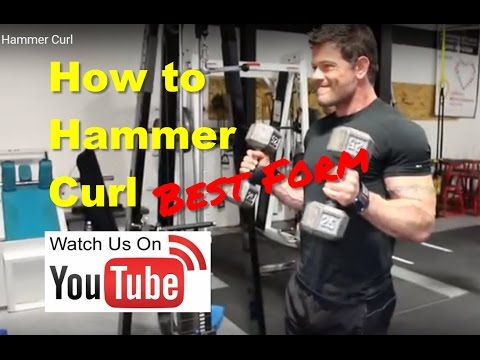 Hammer Curl – An Entire Guide With Form Tips