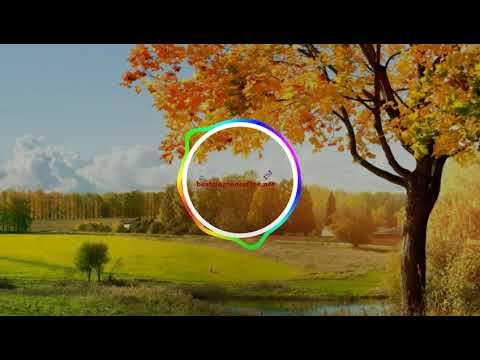 Download  Sairat Ringtone | Best Ringtones Download Free For Mobile