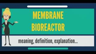What is MEMBRANE BIOREACTOR? What does MEMBRANE BIOREACTOR mean? MEMBRANE BIOREACTOR meaning