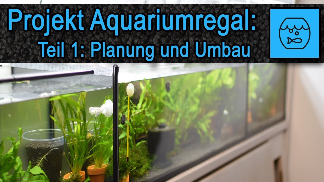 Aquarium Anlage Selber Bauen Teil 1 Zucht Anlage Fur Garnelen