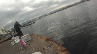 2019年10月17日10時14分 大阪湾 関西製糖 公衆トイレ前 DAISOジグ投げ ツバス釣りの様子1