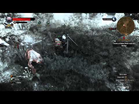 witcher-3-monster-hunting-with-cat-potion