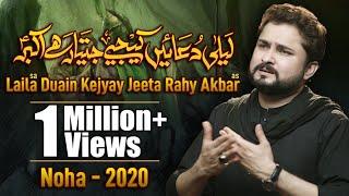 Nohay 2020   Laila Duain Kijiye Jeeta Rahay Akbar   Syed Raza Abbas Zaidi Noha 2020   New Noha 2020