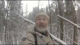 Охота на куницу с ружьем видео