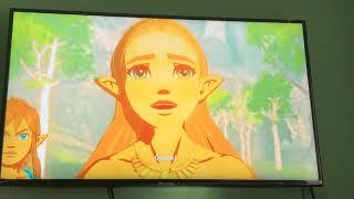 Legend of Zelda breath of the wild#9 CHAMPOIN TUNIC