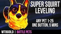 SUPER SQUIRT   Level WoW Battle Pets 1-25 in 5 mins w/1 Button