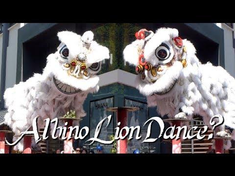 89458fcf1 World's Most Awarded Kun Seng Keng Lion Dance Ushers In CNY 2019 ...