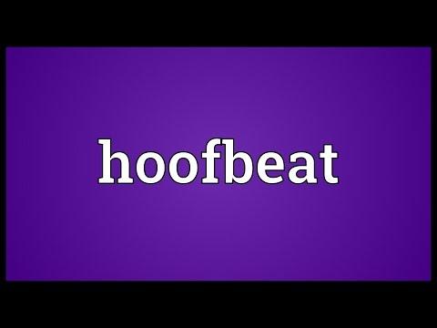 Header of hoofbeat