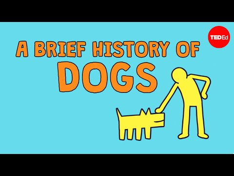 Video image: A brief history of dogs - David Ian Howe
