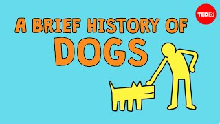 A brief history of dogs - David Ian Howe