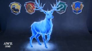 3D Chalk Art - Harry Potter's Patronus