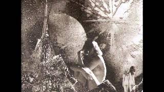Como tú (Magic Music Box) - León Larregui