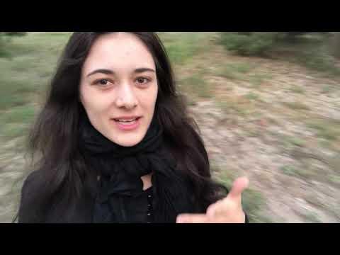 Vlog #322 - Das ZDF war unfair?!// Höckes Interview und ein paar generelle Anmerkungen... ????