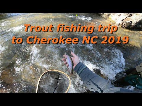 Trout Fishing Trip To Cherokee NC 2019