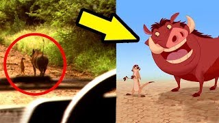 10 Animated Characters Caught In Real Life!