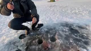 Рыбалка на 203 мкрн 1 ноября 2020г