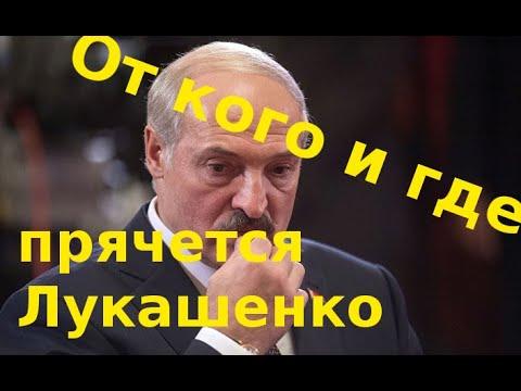 Почему они лузеры и где прятался Лукашенко во время 'тунеядских протестов'